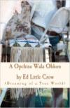 A Opchine Wala Ohkon: Dreaming of a True World